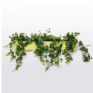 Gold Leaf Design Group Wall Planter Ivy, Green Wall