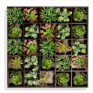 Green Wall, Pixelated Succulent, 25 Compartments By Gold Leaf Design Group