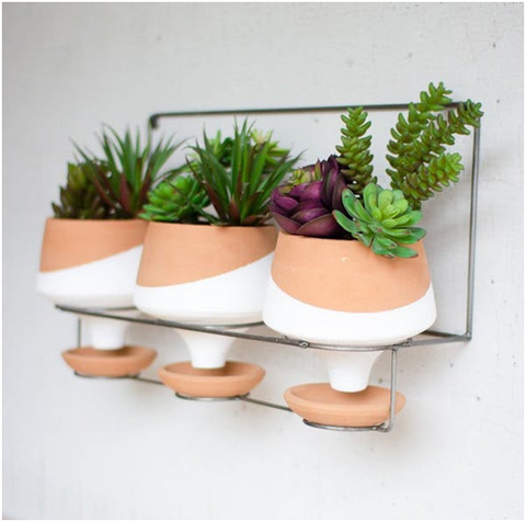 Wall Planters on Wire Hanger
