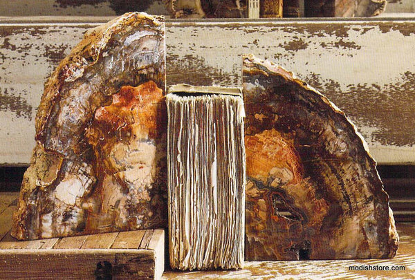 Roost Petrified Wood Bookends Modish Store