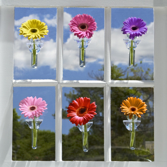 Two's Company 48 Pc Wall Flower