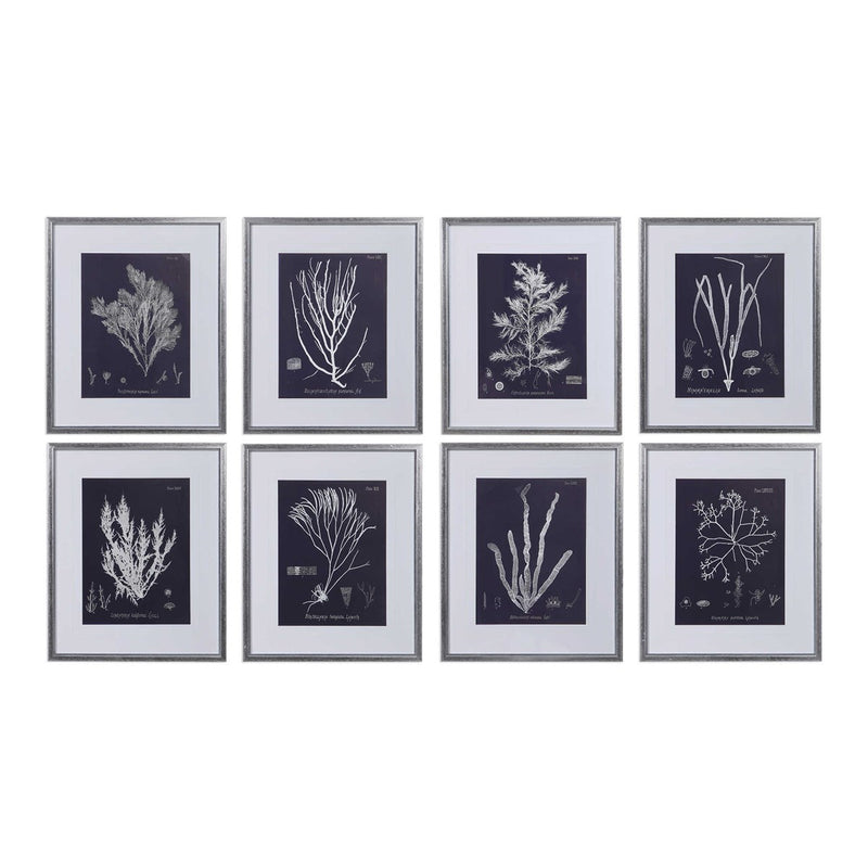 Uttermost Coral on Navy Framed Paints Set of 8