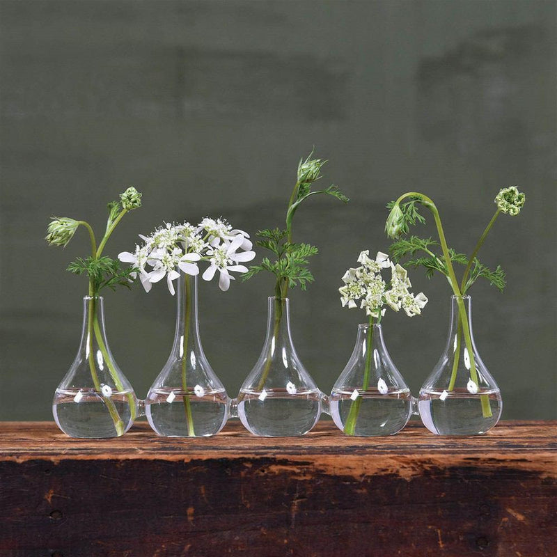 HomArt Quintet Glass Vase - Set of 4