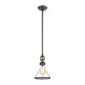 Rutherford 1-Light Mini Pendant with Seedy Glass by ELK Lighting