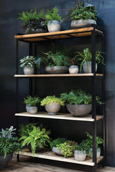 Accent Decor Shelves & Shelving Units