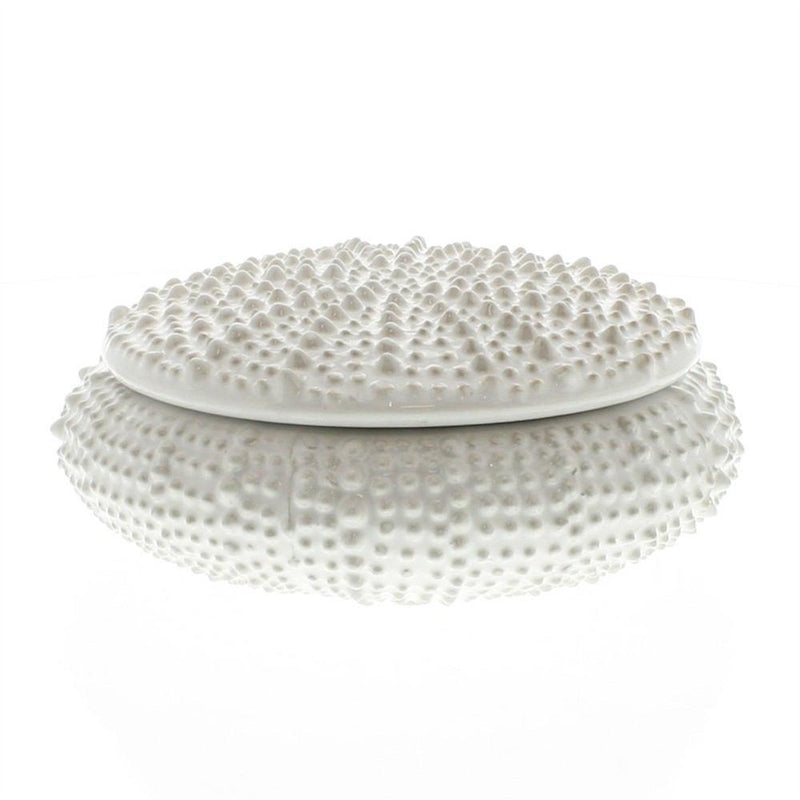 HomArt Urchin Ceramic Box - White - Set of 4 - Feature Image
