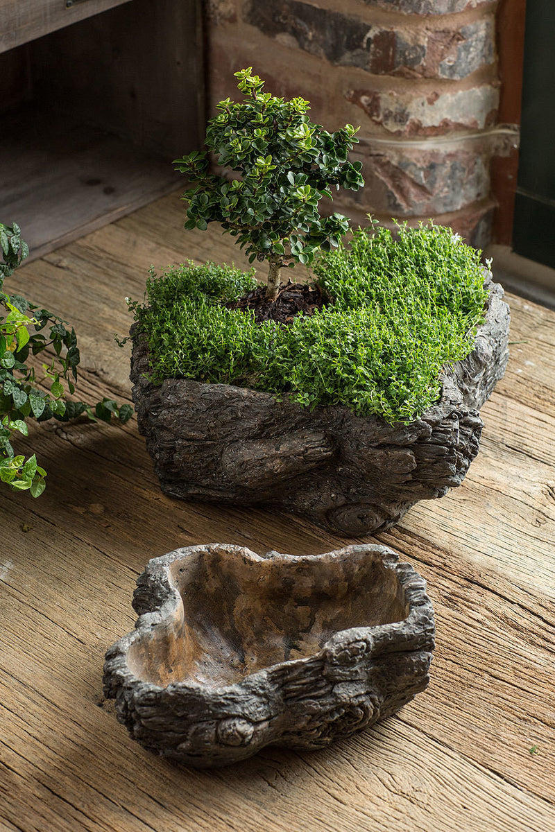 Vagabond Vintage Cement Burled Bark Planter - Set of 2
