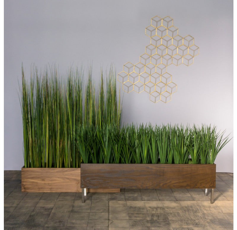 Gold Leaf Design Group Tall Onion Grass In Custom Rectangle Planter