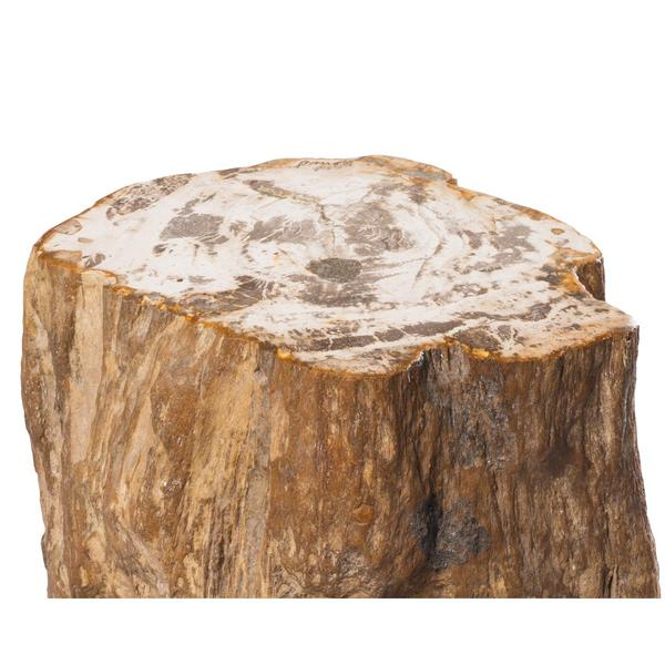 Aire Furniture Petrified Wood Stool PF-1010