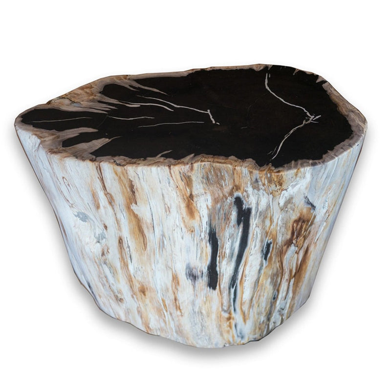 Petrified Wood Stool PF-2075 (2 of 2) by Aire Furniture