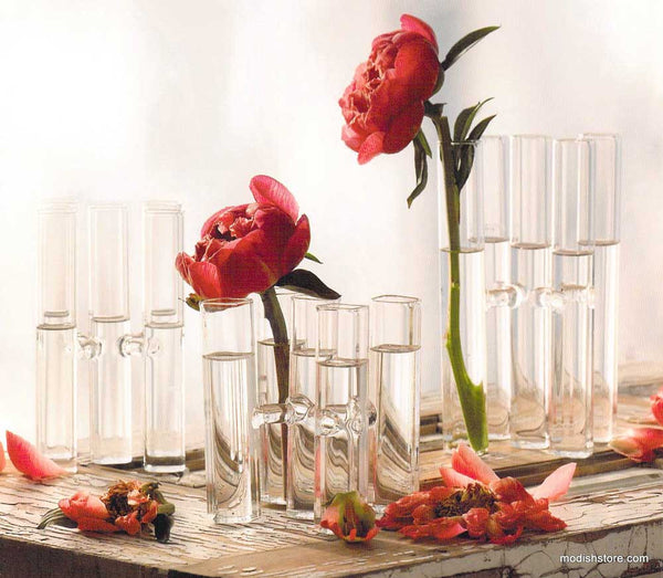 Roost Satellite Glass Vases Modish Store