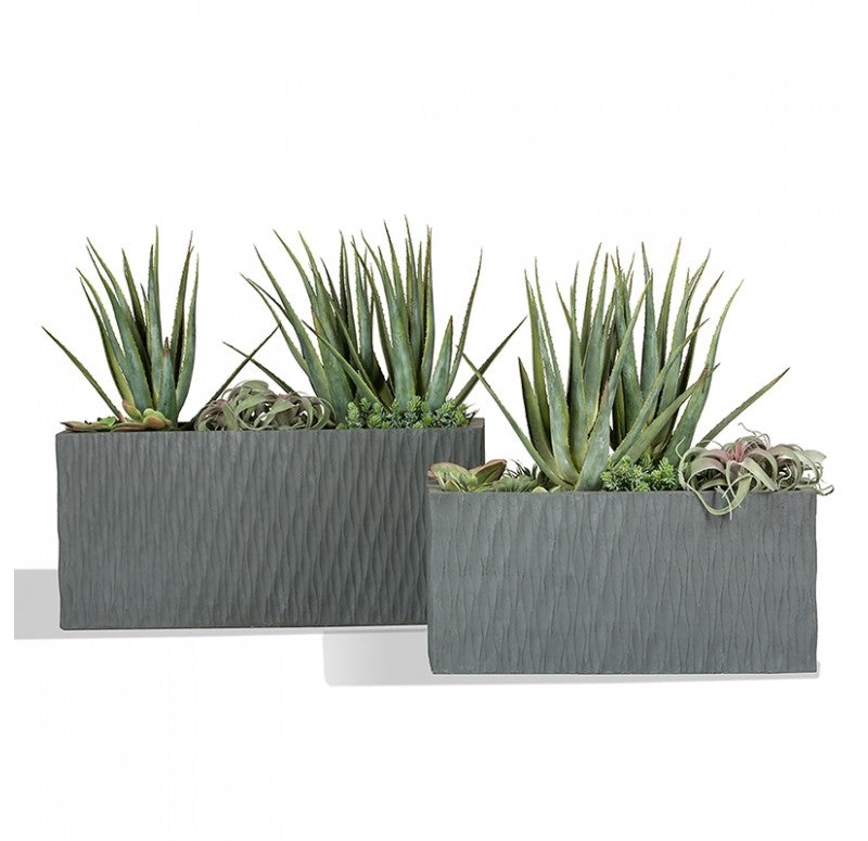 Mediterranean Mix in Drift Planters, Set of 2 by Gold Leaf Design Group