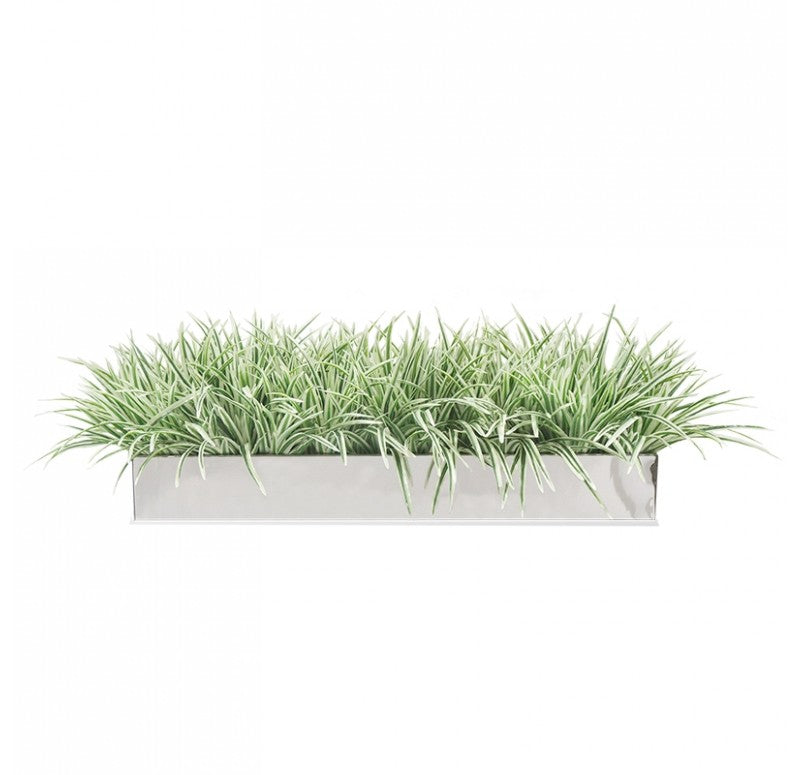 Stainless Steel Table Planter, Zebra Grass by Gold Leaf Design Group
