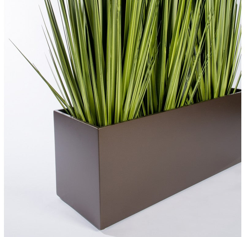 "Grass: Potted Century Grass in Linear Planter, 38""OL by Gold Leaf Design Group"