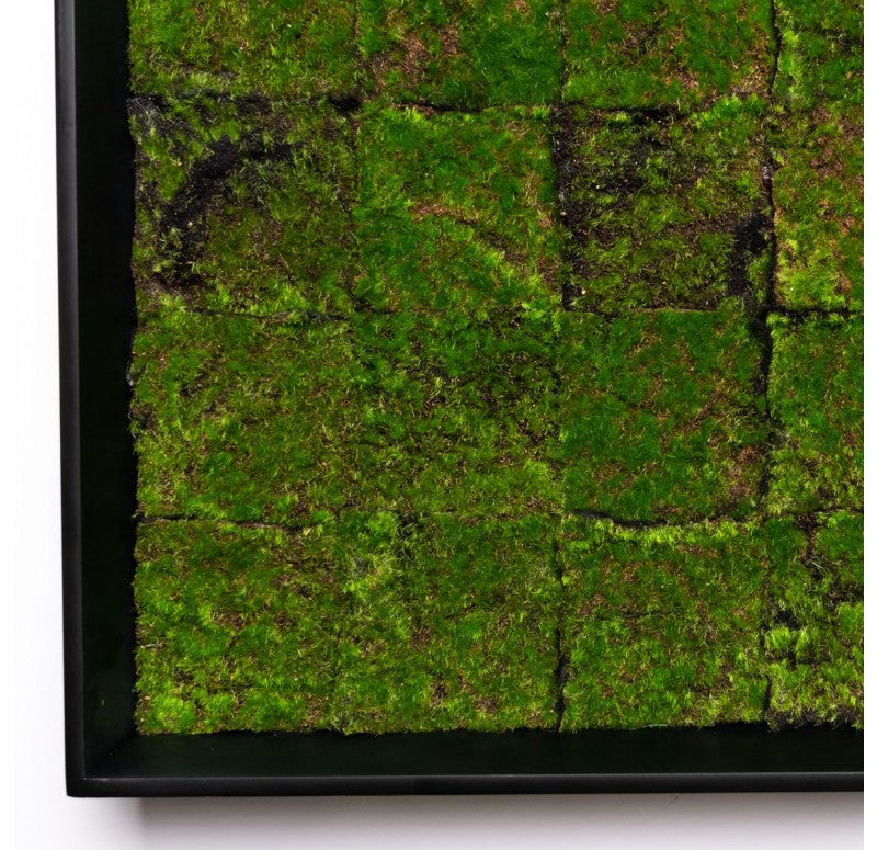 Gold Leaf Design Group Green Wall, New Moss Patch