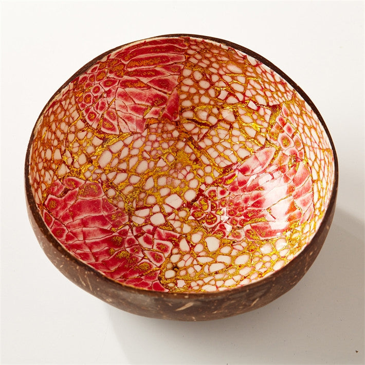 Tozai Home A/4 Coconut and Shell Bowl - Set of - 12