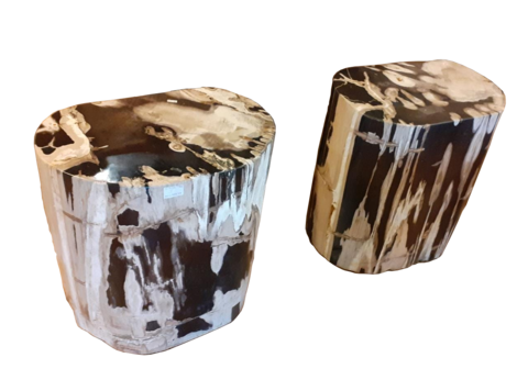Oval Petrified Stools-Set of 2