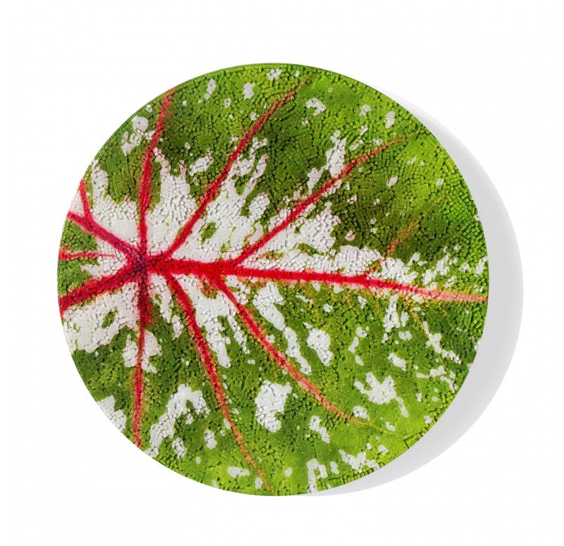 "Mosaic Caladium Disc Pink Wall Art, 16""D by Gold Leaf Design Group"