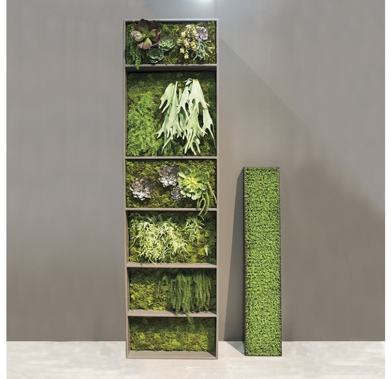 Green Wall, Curly Grass by Gold Leaf Design Group