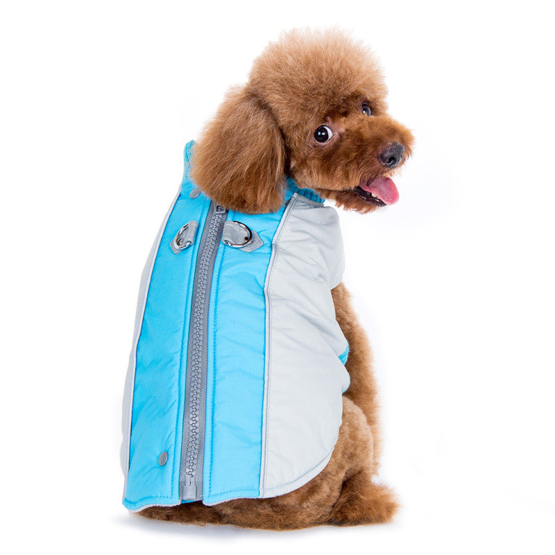 Cute and Practical - The Mountain Hiker Coat by DOGOⓇ Pet Fashions
