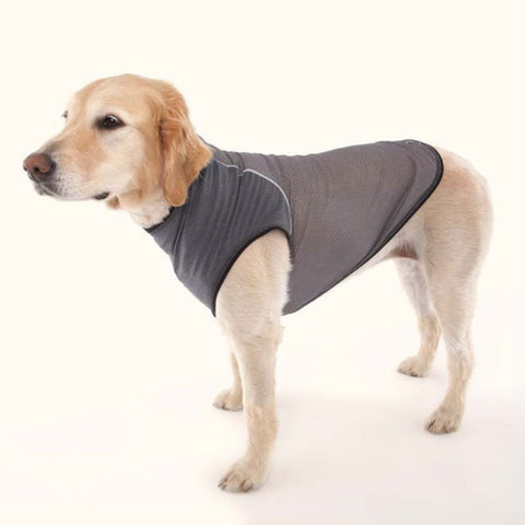 Insect Repellent T Shirt for Dogs by Doggles