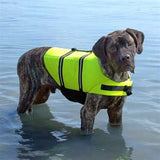 Large breed dog wearing the yellow Life Jacket for Dogs by Paws Aboard