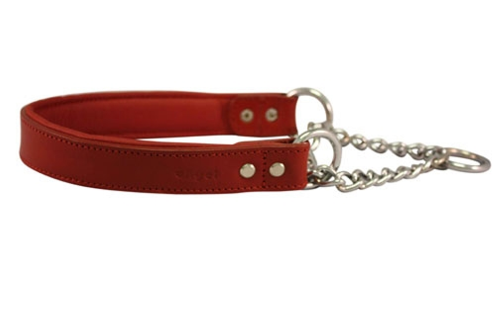 Rio Martingale Dog Collar by Angel Pet Supplies Inc.