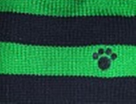 Rugby Paw Sweater by Dallas Dogs-Blue/Green