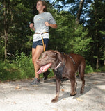 Running with Your Dog Using the Quantum Leash by Kurgo