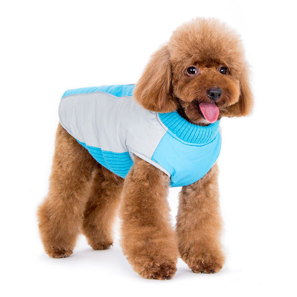Looking Stylish in the Mountain Hiker Coat by DOGOⓇ Pet Fashions