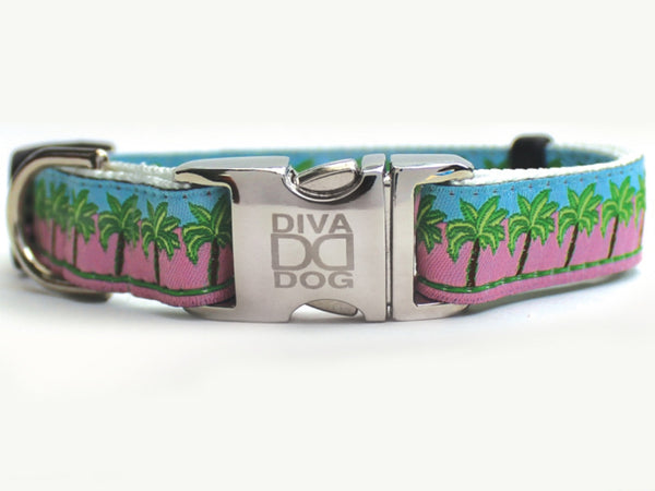 South Beach Collar by Diva-Dog