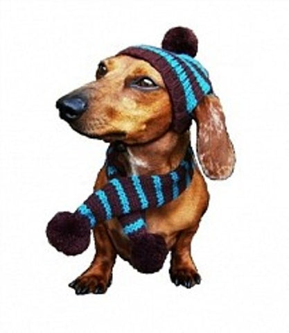 Striped Hat and Scarf by Dallas Dogs