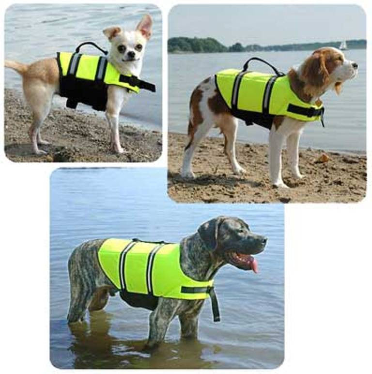 3 different dog breeds wearing life jacket for dogs by Paws Aboard