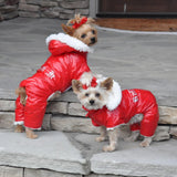 Cute Yorkies Showing Off Their Red Ruffin It Dog Snow Suits by Doggie Design - UKUSCAdoggie