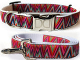 Ziggy Dog Collar and Leash Set by Diva-Dog