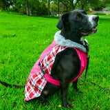 dog-models-alpine-all-weather-dog-coat-raspberry-plaid