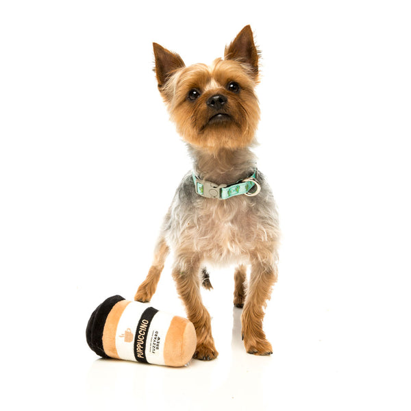are-you-looking-at-my-puppoccino-dog-toy