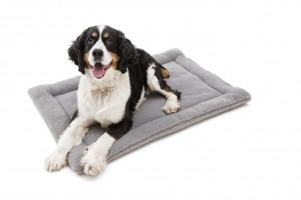Dog lying on Gravel Nature Nap Dog Bed by West Paw Design