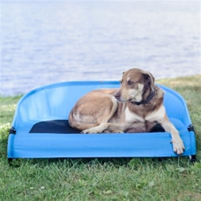 cool-air-cot-elevated-pet-bed-is-the-perfect-place-to-chill