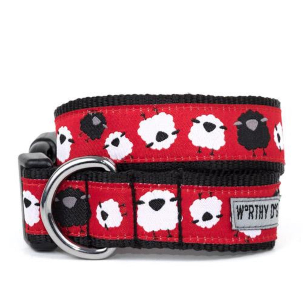counting-sheep-dog-collar