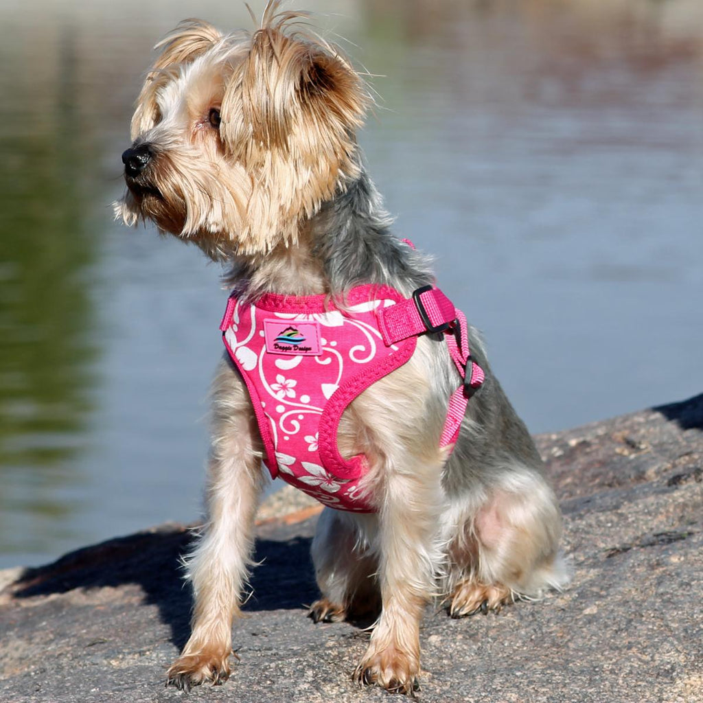 dapper-dog-wears-pink-hibiscus-wrap-and-snap-choke-free-dog-harness
