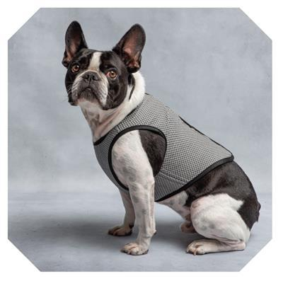 dog-models-cooling-vest