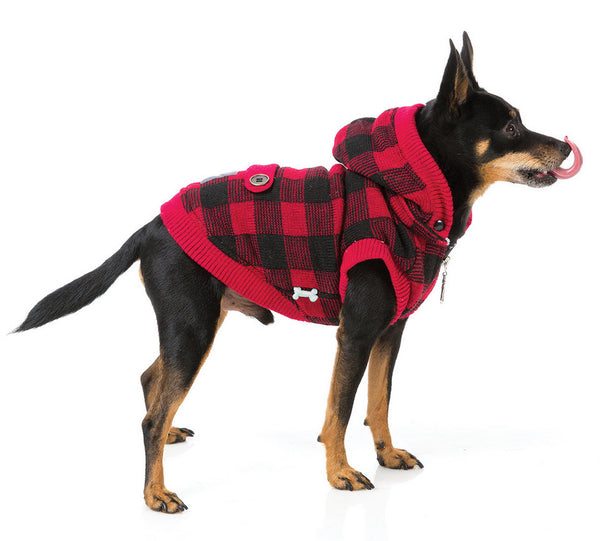 dog-models-lumberjack-jacket