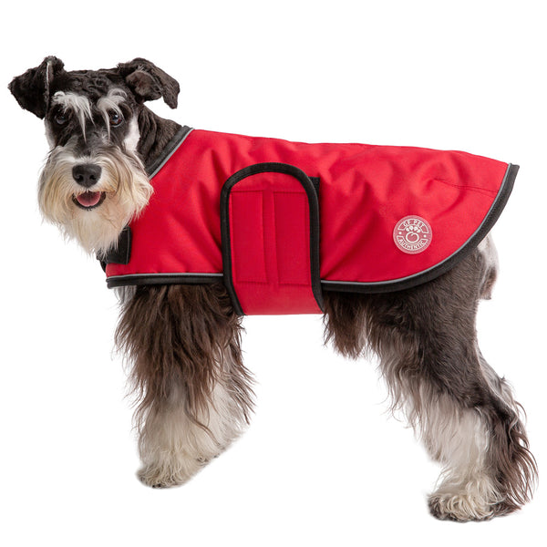 dog-models-red-blanket-dog-jacket