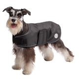 dog-ready-for-winter-in-black-blanket-dog-jacket
