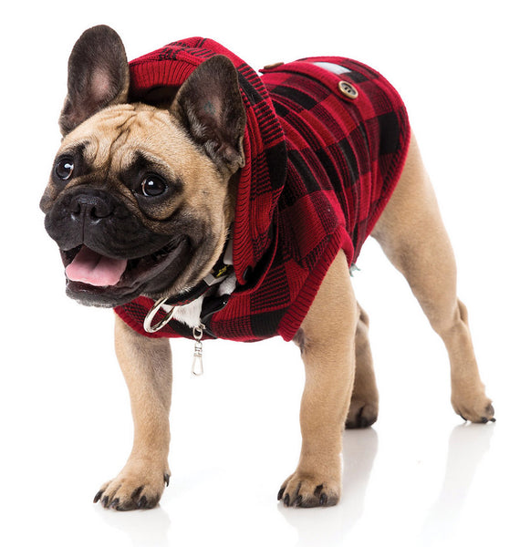 dog-wears-lumberjack-jacket
