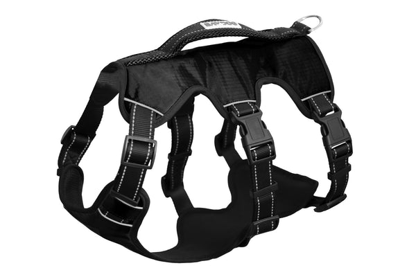 galveston-bay-harness-black