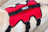 galveston-bay-harness-back-view-red