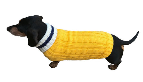 Preppy Pup Sweater - Yellow and Navy