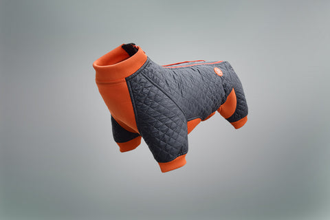 Springy Protective Dog Coat